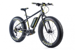 FAT E-BIKE Leader Fox BORGO 26